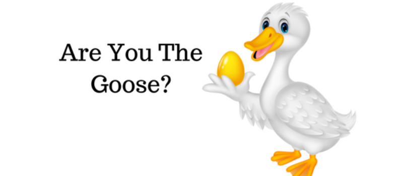 Are You the Goose? Intersecting Personal and Financial Asset Protection